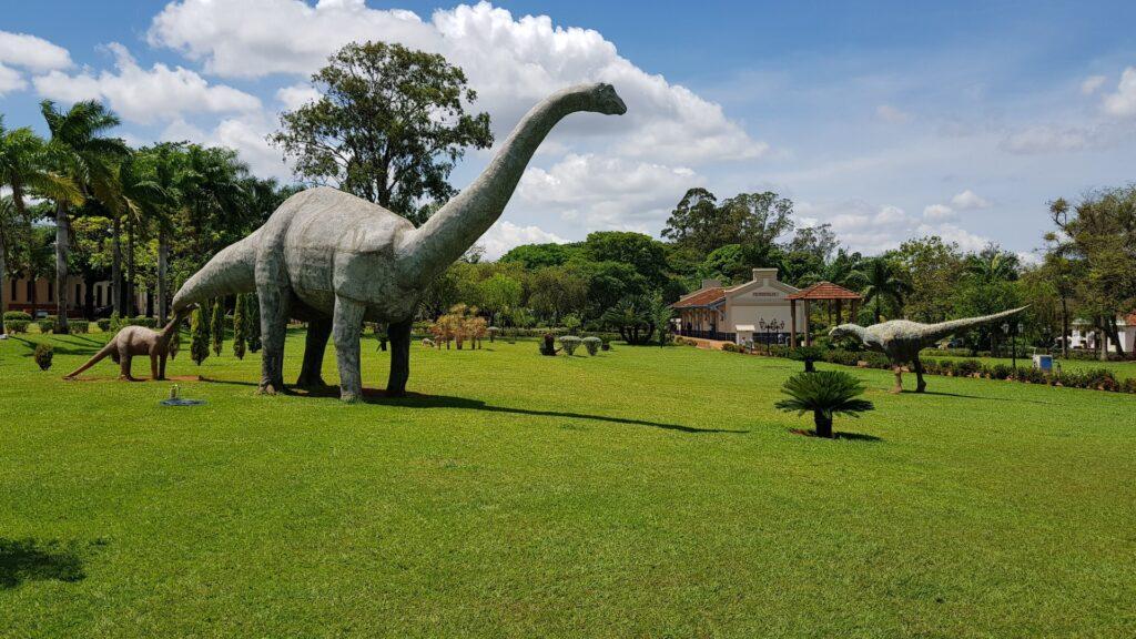 Na região do Triângulo Mineiro, vale destacar a presença de sítios paleontológicos nos municípios de Prata e Uberaba. Lá, foram descobertos fósseis do maior dinossauro encontrado no Brasil, que viveu há mais de oitenta milhões de anos.